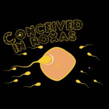 Conceived In Roxas Frauen Hoodies