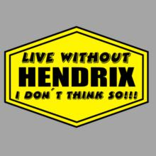 Live Without Hendrix , I Don't Think So ! Raglan T-Shirt