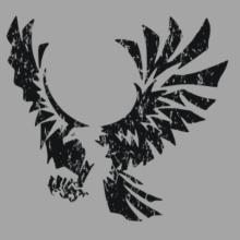 Eagle With Open Wings Raglan T-Shirt