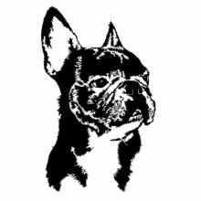 French Bulldog Face Special Graphic Langarm T-Shirt