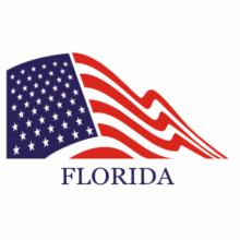 Flag Usa Florida V-Ausschnitt T-Shirt