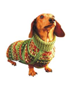 Dachshund christmas sweater Crossing Sign