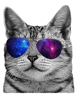 Cat galaxy glasses Parking Sign