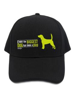 Even The Biggest Dog Has Been A Pup - Beagle Baseball Cap