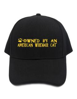 Owned By An American Wirehair Baseball Cap