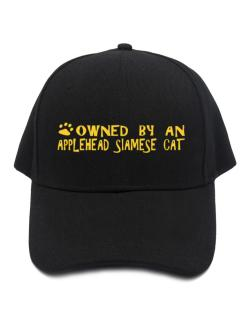 Owned By An Applehead Siamese Baseball Cap