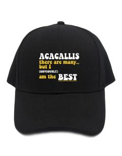 Acacallis There Are Many... But I (obviously) Am The Best Baseball Cap