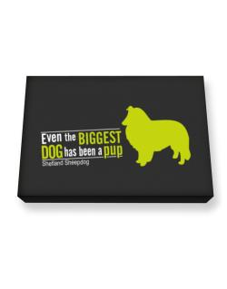 Even The Biggest Dog Has Been A Pup - Shetland Sheepdog Canvas square