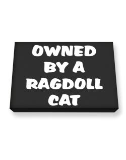 Owned By S Ragdoll Canvas square