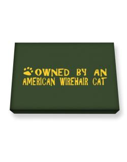 Owned By An American Wirehair Canvas square