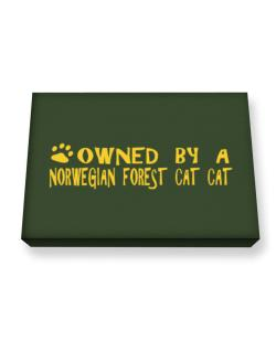 Owned By A Norwegian Forest Cat Canvas square