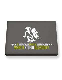 To do Triathlon or not to do Triathlon, what a stupid question!!  Canvas square
