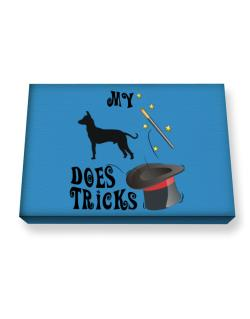 My Peruvian Hairless Dog Does Tricks ! Canvas square