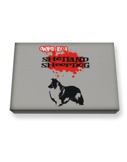 Owned By A Shetland Sheepdog Canvas square