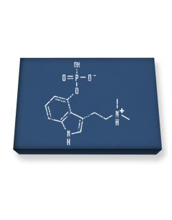 Psilocybin Chemical Formula Canvas square
