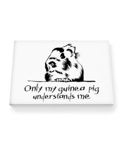 Only my guinea pig understands me Canvas square