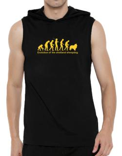 Evolution Of The Shetland Sheepdog Hooded Sleeveless T-Shirt - Mens