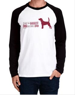 Even The Biggest Dog Has Been A Pup - Beagle Long-sleeve Raglan T-Shirt