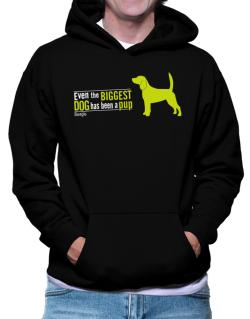 Even The Biggest Dog Has Been A Pup - Beagle Hoodie