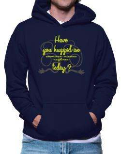 Have You Hugged An American Mission Anglican Today? Hoodie