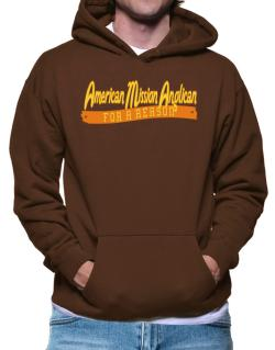 American Mission Anglican For A Reason Hoodie