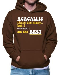 Acacallis There Are Many... But I (obviously) Am The Best Hoodie