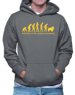 Evolution Of The Shetland Sheepdog Hoodie