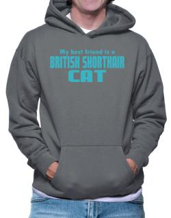 My Best Friend Is A British Shorthair Hoodie