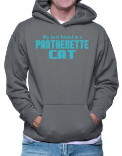 My Best Friend Is A Pantherette Hoodie