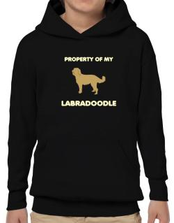 Property Of My Labradoodle Hoodie-Boys