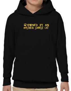Owned By An Applehead Siamese Hoodie-Boys