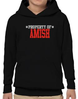 """ Property of Amish "" Hoodie-Boys"