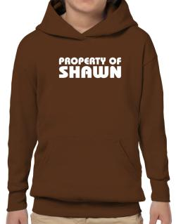 """ Property of Shawn "" Hoodie-Boys"