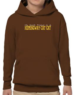 My Best Friend Is A Hemingway Cat Hoodie-Boys