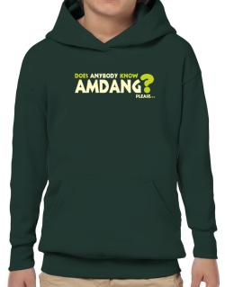 Does Anybody Know Amdang? Please... Hoodie-Boys
