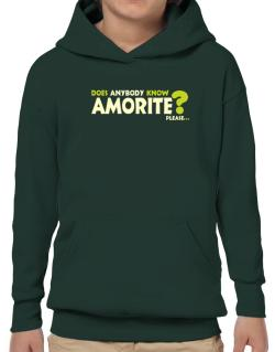 Does Anybody Know Amorite? Please... Hoodie-Boys