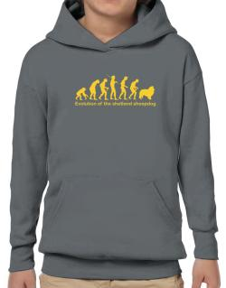 Evolution Of The Shetland Sheepdog Hoodie-Boys