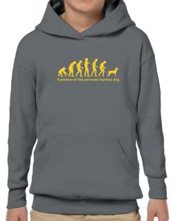 Evolution Of The Peruvian Hairless Dog Hoodie-Boys