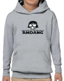 I Can Teach You The Dark Side Of Amdang Hoodie-Boys