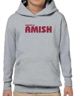 Property Of Amish Hoodie-Boys