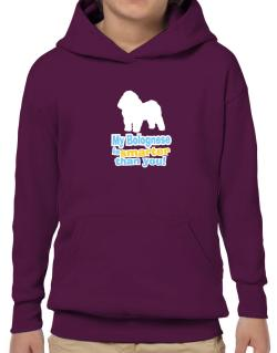My Bolognese Is Smarter Than You ! Hoodie-Boys