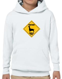 """ Dogs at play Dachshund ""  Hoodie-Boys"