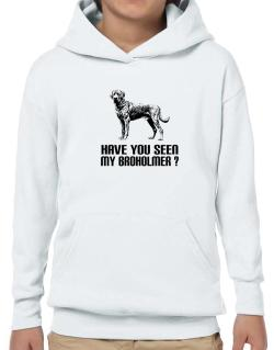 Have you seen my Broholmer? Hoodie-Boys