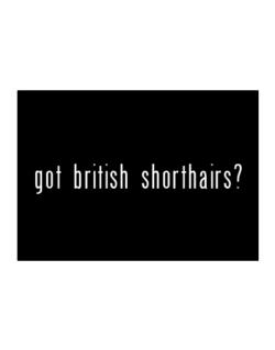 Got British Shorthairs? Sticker
