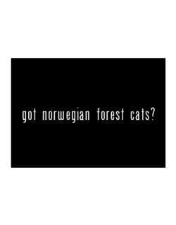 Got Norwegian Forest Cats? Sticker