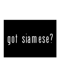 Got Siamese? Sticker