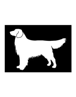 Golden Retriever Silhouette Embroidery Sticker The golden retriever is a medium sized dog which was historically used to retrieve animals for golden retrievers have a dense inner coat providing them with warmth and a way to repel water off. golden retriever silhouette embroidery sticker