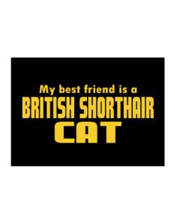 My Best Friend Is A British Shorthair Sticker