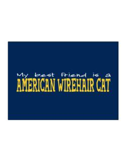 My Best Friend Is An American Wirehair Sticker