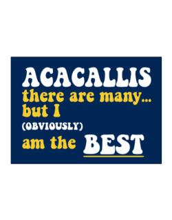 Acacallis There Are Many... But I (obviously) Am The Best Sticker